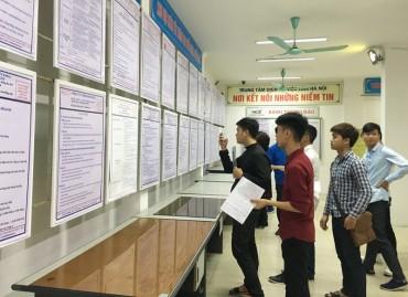 Xu hướng tuyển dụng: Cơ hội đang nghiêng về lao động trẻ