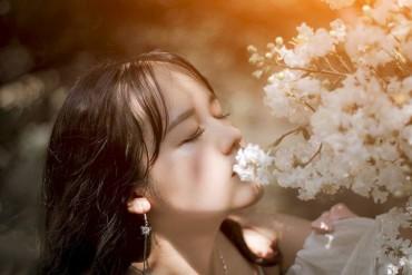 Người từng nắm tay em mùa hoa sữa năm ấy, nay đâu rồi?