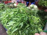 Ảnh hưởng bão số 3 Wipha: Rau xanh ở Hà Nội tăng giá mạnh
