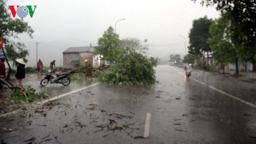 Dự báo thời tiết hôm nay: Nhiều tỉnh, thành có mưa to, dông, lốc