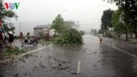 Thời tiết hôm nay: Nhiều tỉnh thành phố có mưa to và dông, lốc