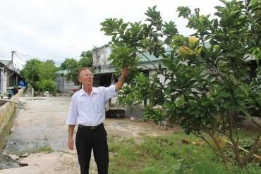 """Tỷ phú """"đa cây, đa con"""" ở Hồng Thái"""