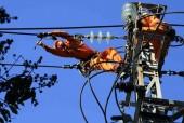 Diễn tập xử lý sự cố mất điện phục vụ APEC 2017