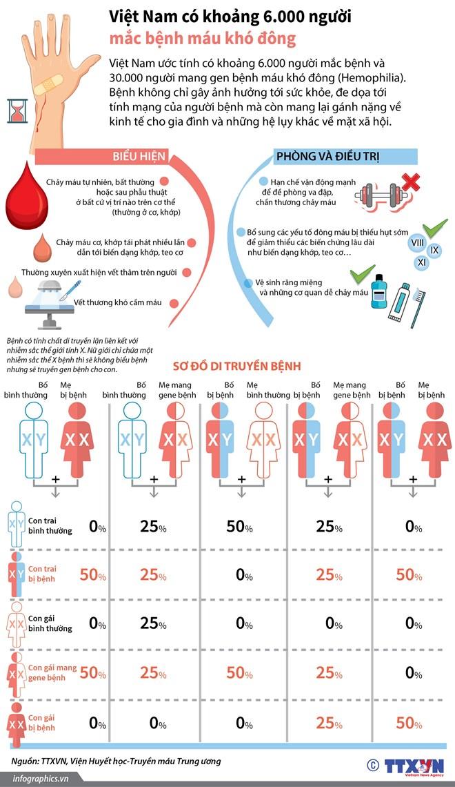 infographics viet nam co khoang 6000 nguoi mac benh mau kho dong