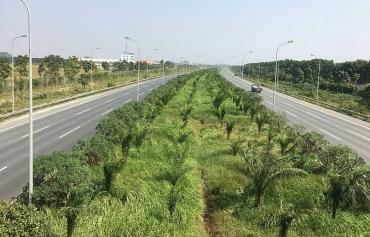 Nhiều giải pháp bảo vệ môi trường Thủ đô