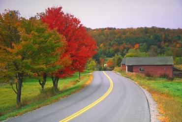Du khách nườm nượp kéo đến đây để ngắm mùa cây thay lá đẹp nhất cả năm