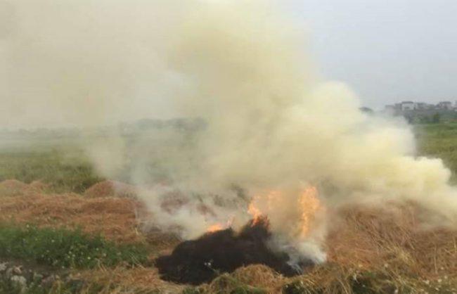Khói do đốt rơm rạ uy hiếp an toàn bay tại sân bay Nội Bài