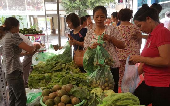 Vì sao người Việt sợ ăn... rau