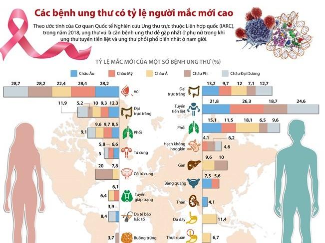 [Infographics] Các bệnh ung thư có tỷ lệ người mắc mới cao