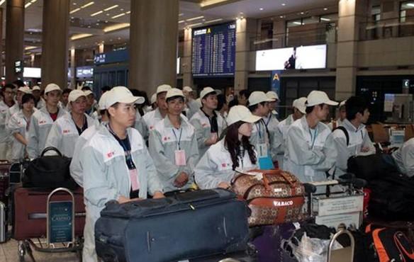 Hàn Quốc: Truy quét và ân xá lao động nước ngoài làm việc bất hợp pháp