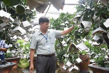 Nhiều mô hình sản xuất hiệu quả ở Mê Linh