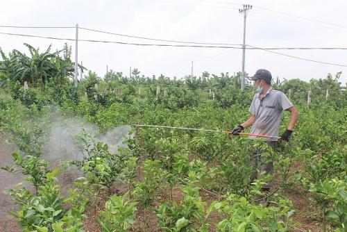 Đào tạo nguồn nhân lực cho nông nghiệp ở nông thôn: Vẫn còn nhiều thách thức