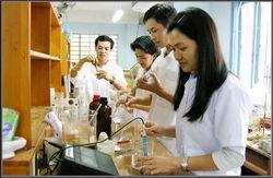 Khung trình độ quốc gia Việt Nam gồm 8 bậc