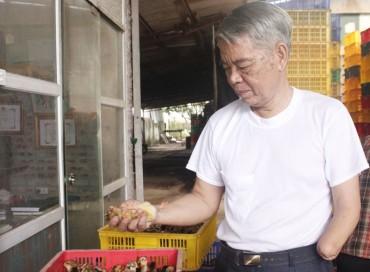 Thương binh Đỗ Đình Ngô:  Làm giàu từ một bàn tay