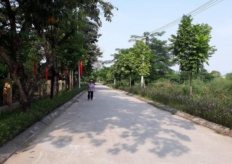 """Mô hình đường hoa """"sạch làng đẹp xóm"""": Đẹp nông thôn, sạch xóm làng"""