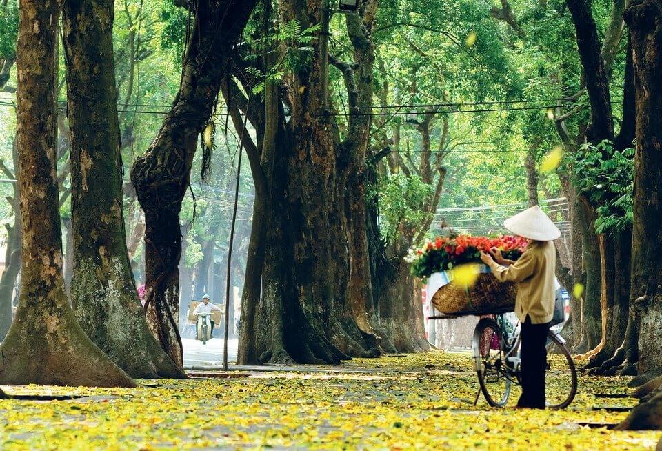 Dự báo thời tiết 4.11: Hà Nội trải qua bốn mùa trong một ngày