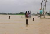 Thủ phủ làng mai miền Trung 'dầm mình' trong lũ, lo vụ tết thất thu