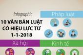 10 văn bản luật có hiệu lực từ 1-1-2018