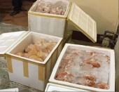 Phát hiện hơn 200kg nội tạng hôi thối chuẩn bị lên bàn nhậu