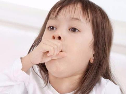 Có nên kiêng tôm, thịt gà khi trẻ bị ho?
