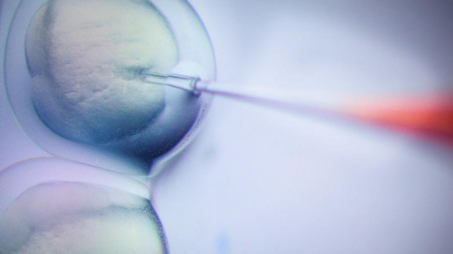 WHO sẽ thành lập ủy ban nghiên cứu việc chỉnh sửa gen