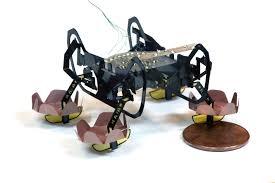 Robot 'tí hon' - Trợ tá đắc lực đầy hứa hẹn