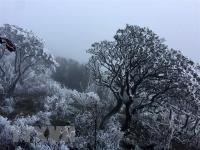 Bắc Bộ sáng sớm trời rét, Nam Bộ đề phòng thời tiết nguy hiểm