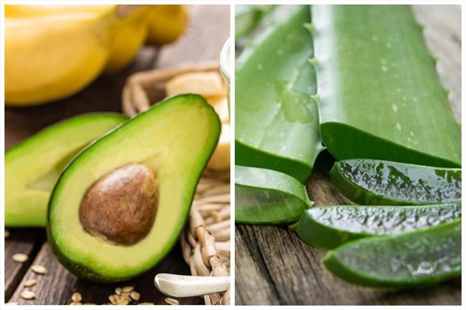 Bơ và nha đam chứa nhiều loại vitamin và chất giúp da thêm căng mịn, chắc khỏe. Ảnh đồ họa: MV
