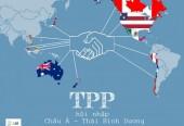 Tham gia TPP: 'Phần bánh' sẽ lớn hơn nếu…