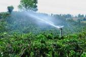 Kinh nghiệm tiết kiệm nước từ Nestlé ?