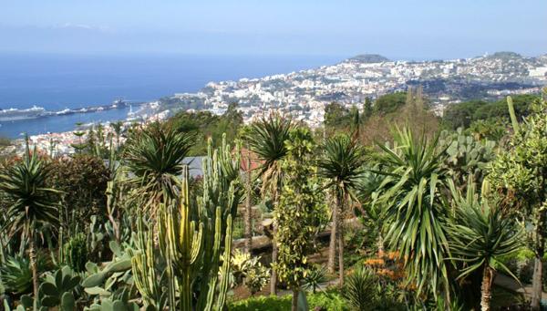 6-Madeira-5432-1429665452.jpg