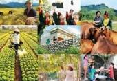 Đầu tư 21 Chương trình mục tiêu giai đoạn 2016-2020