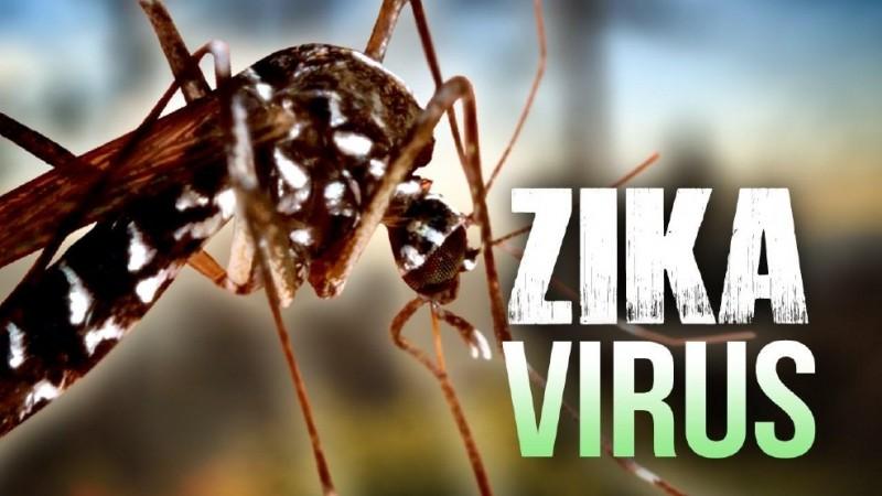 Ghi nhận 2 trường hợp nhiễm vi rút Zika trong đó một trường hợp đang mang thai