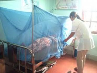 Thêm 2 trường hợp mới nhiễm virút Zika tại TP.HCM