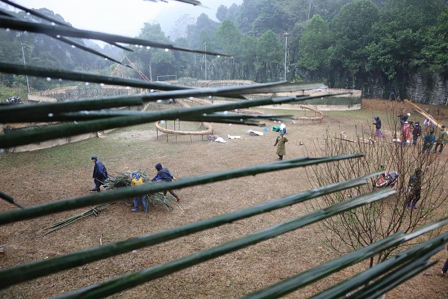 Khẩn trương cho rừng vào Hội
