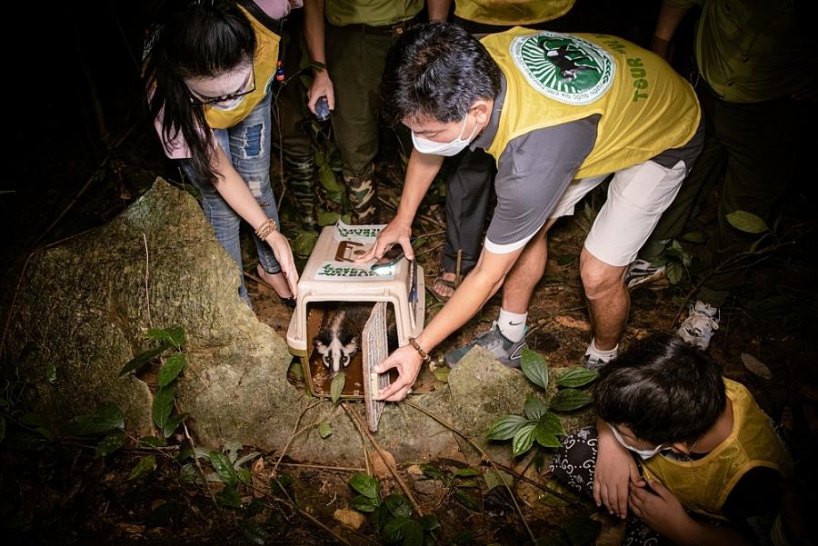Tái thả động vật hoang dã về rừng nguyên sinh