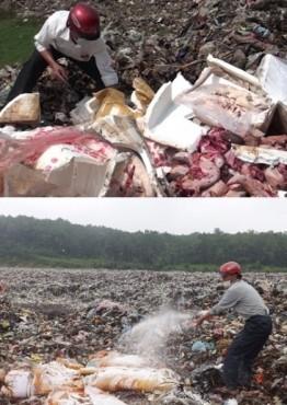 Tịch thu, tiêu hủy 1,5 tấn nội tạng động vật không rõ nguồn gốc