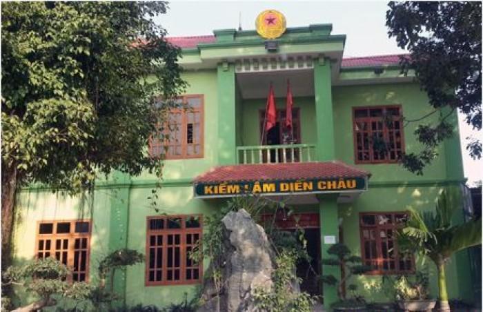 Hạt trưởng Hạt Kiểm lâm huyện Diễn Châu bị khởi tố