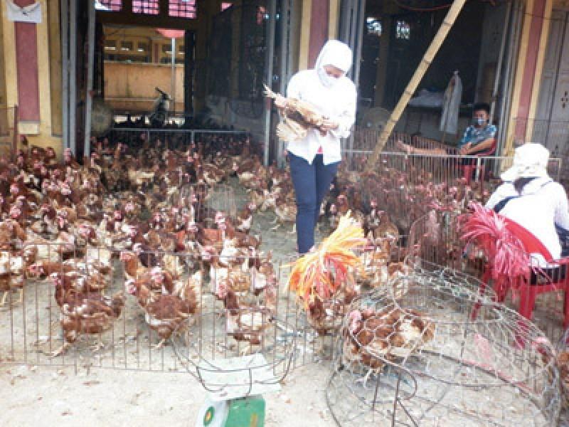 Đảm bảo công tác vệ sinh an toàn thực phẩm