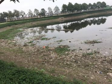 Hồ điều hòa trong công viên Yên Sở đang bị ô nhiễm
