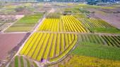 Điều chỉnh quy hoạch sử dụng đất tỉnh Hưng Yên