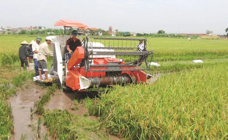 Xã Đại Thắng, huyện Phú Xuyên: Phố thị giữa đồng chiêm