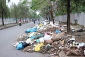 Đường Đặng Xuân Bảng – Định Công ngập rác