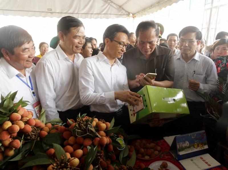 Phó Thủ tướng Vũ Đức Đam dự lễ hội vải thiều Thanh Hà 2018
