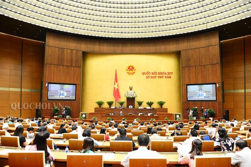 Quốc hội thông qua Luật Thể dục, thể thao