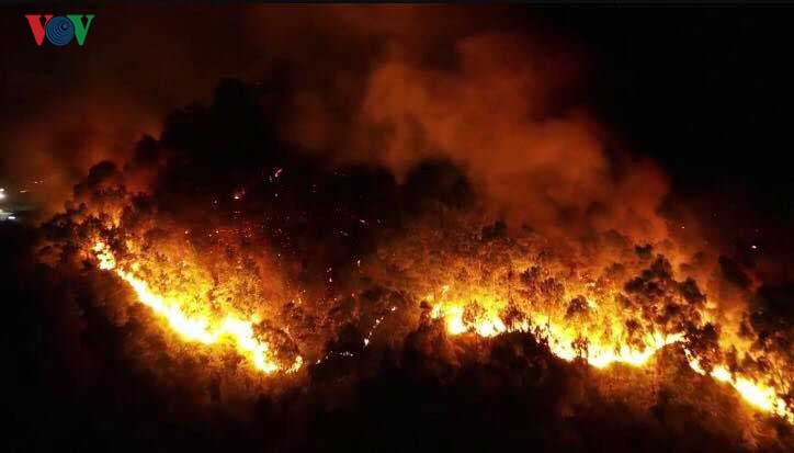 Thủ tướng Chính phủ chỉ đạo cấp bách phòng cháy, chữa cháy rừng