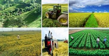 Tổng kết Chương trình khoa học phục vụ xây dựng nông thôn mới