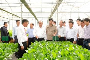 Sản xuất nông nghiệp công nghệ cao là hướng đi quan trọng