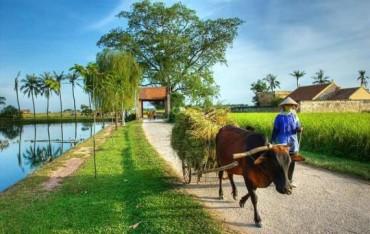 Khẩn trương hoàn thiện Đề án hỗ trợ thôn, bản khó khăn xây dựng nông thôn mới