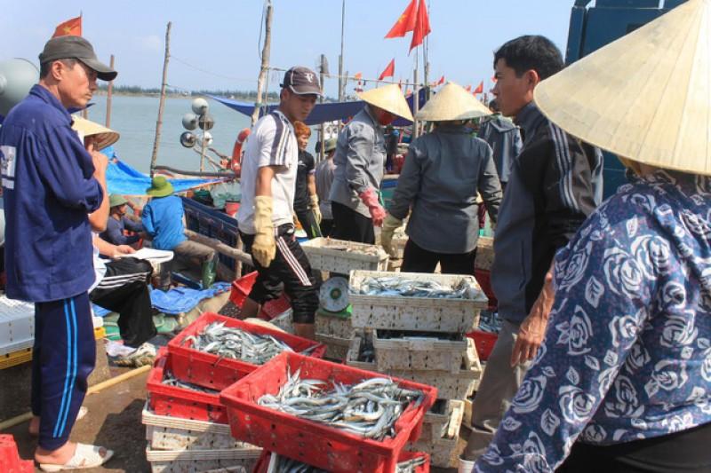 Chấn chỉnh hoạt động khai thác hải sản
